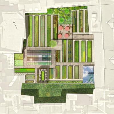 Projet de transformation de toiture terrasse en espace comestible