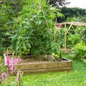 P14 projet de jardin comestible dans l'agglomération Rouennaise 76 - 001